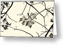 Colorless Autumn Greeting Card