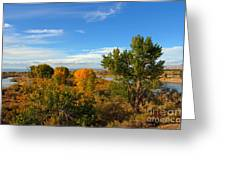 Colors Along The Colorado Greeting Card