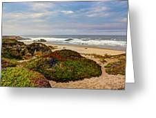 Colors And Texures Of The California Coast Greeting Card