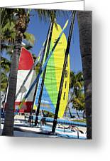 Key West Sail Colors Greeting Card