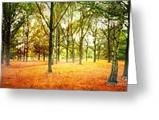 Colors Cool Greeting Card by Boon Mee