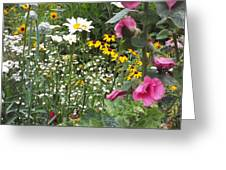 Colors In The Garden Greeting Card
