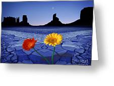 Colors In The Valley Greeting Card