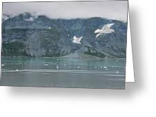 Colors Of Alaska - Glacier Bay Greeting Card
