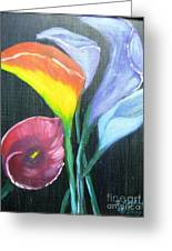 Colors Of Calla Lillies Greeting Card