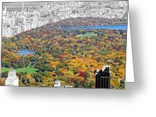 Colors Of Central Park Greeting Card