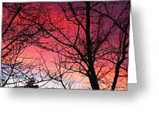 Colors Of Dusk Greeting Card