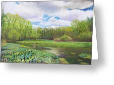 Colors Of Spring At Millbrook Marsh Greeting Card