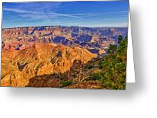 Colors Of The Canyon Greeting Card