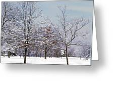 Colors Of Winter Greeting Card