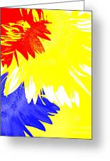 Colors Within Greeting Card