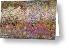 Colourful Almond Trees Greeting Card