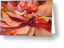 Colourful Hibiscus Greeting Card