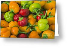 Colourful Mini Bell Peppers Greeting Card