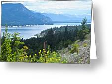 Columbia Lake Which Is Source Of The Columbia River-bc  Greeting Card