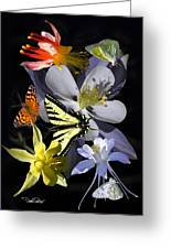Columbine And Butterfly Collage Greeting Card
