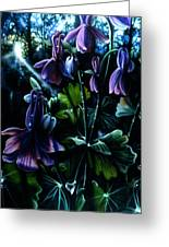 Columbine In The Woods Greeting Card