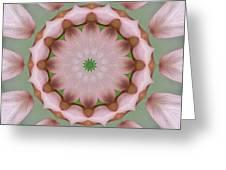 Columbine Kaleidoscope Greeting Card