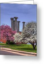 Columns And Dogwood Trees Greeting Card