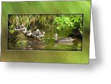 Come On...the Waters Fine. Greeting Card