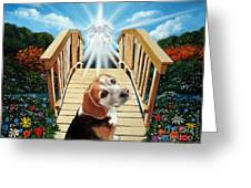 Come Walk With Me Over The Rainbow Bridge Greeting Card