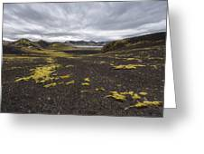 Coming And Going Greeting Card by Jon Glaser