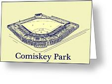 Comiskey Park 1910 Greeting Card