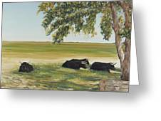 Commanche National Grasslands La Junta Colorado Greeting Card