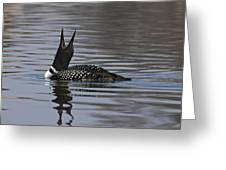 Common Loon 147 Greeting Card