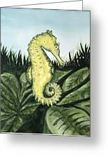 Common Seahorse Greeting Card