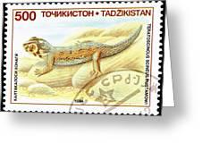 Common Wonder Gecko Lizard Greeting Card