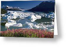 Composite View Of Colony Glacier W Greeting Card