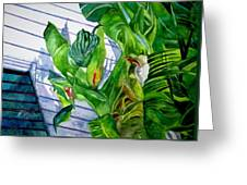Conch House Tour Greeting Card