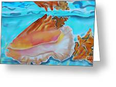 Conch Shallows Greeting Card