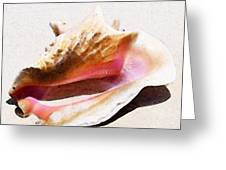 Conch Shell - Listen Greeting Card