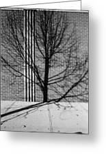 Concrete Tree II Greeting Card