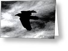 Condor In Flight Greeting Card
