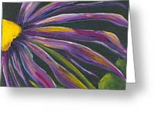 Cone Flower I Greeting Card
