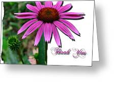 Cone Thank You Greeting Card