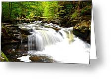Conestoga Falls Greeting Card