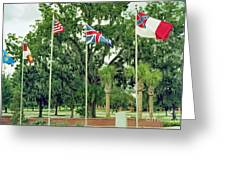 Confederate - Flags Of My Ancestors Greeting Card