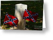 Confederate Grave   #2831 Greeting Card