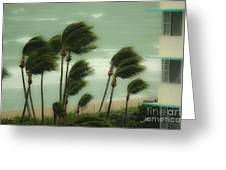 Confronting The Winds Greeting Card