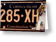 Connecticut License Plate Greeting Card