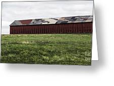 Connecticut Tobacco Barn Greeting Card