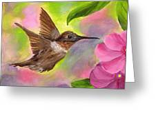 Connie's Hummingbird Greeting Card