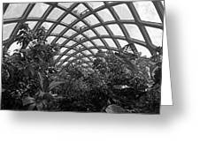 Conservatory Denver Botanic Garden Black And White  Greeting Card