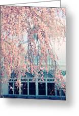 Conservatory  In Spring Greeting Card