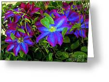 Constance's Clematis Greeting Card