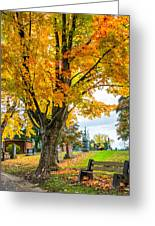 Contemplation Bench Greeting Card